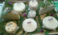 plateau-fromage-9